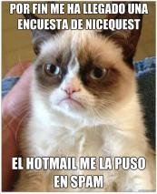 Concurso Nicequest: Gato Grumpy por Jose Rama