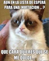 Concurso Nicequest: Gato Grumpy por Juan Marquez Aznar