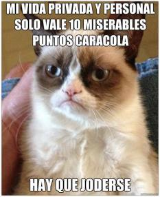 Concurso Nicequest: Gato Grumpy por Laia Txanis