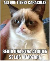 Gato Grumpy por Luis Bestrong