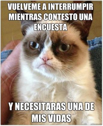 Gato Grumpy por Luis Guerra