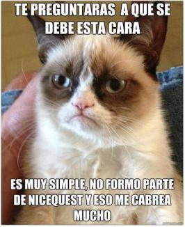 Gato Grumpy por Mar Gomez Torres