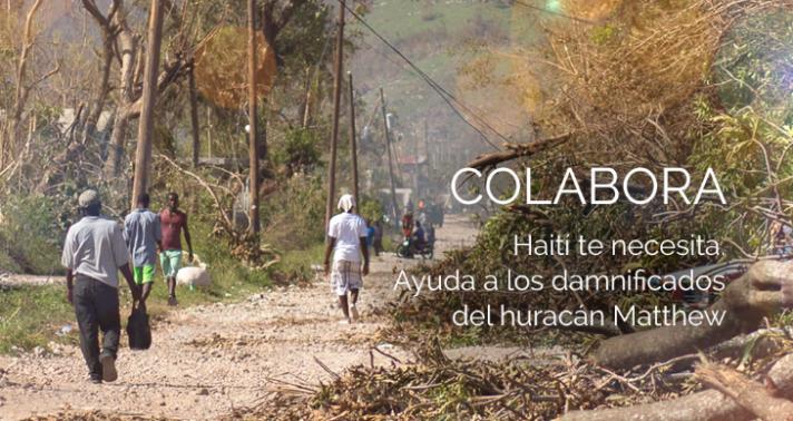 Nicequest colabora con Haití